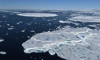 Arktyka bez lodu
