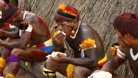 Łzy AmazoniI
